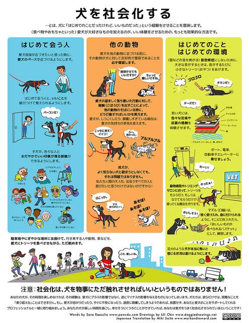 ポスター 犬を社会化する(DoggieDrawings.net)