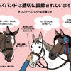 The-Japanese-version-of-horse-noseband-poster